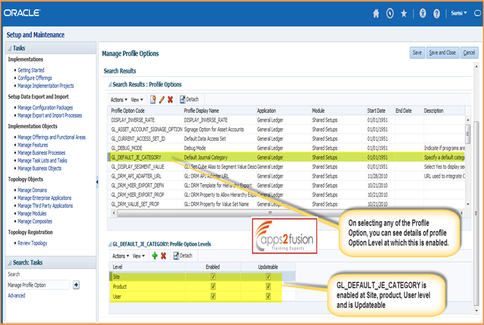 Profile Options in Fusion Application- Part 1