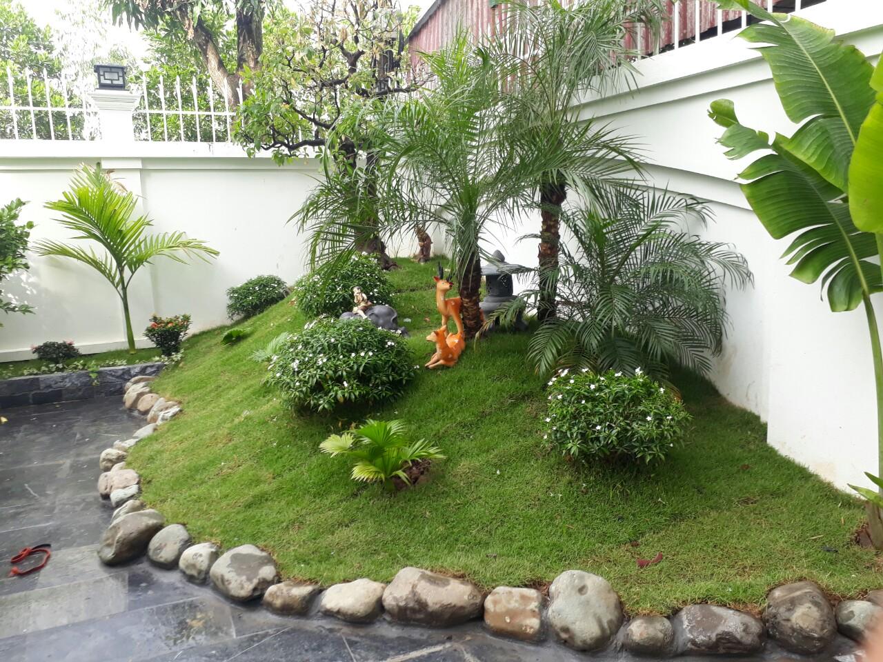 Tận dụng phần đất nhô lên để tạo điểm nhấn cho góc sân nhà