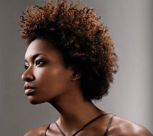 the 4 best moisturizers for thick dry natural hair bglh