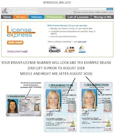 Please enter WDL # below (state id, permit or driver license number)
