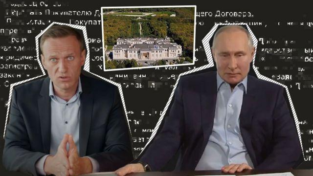 Navalny and Putin