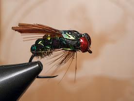 Синьо-зелена муха