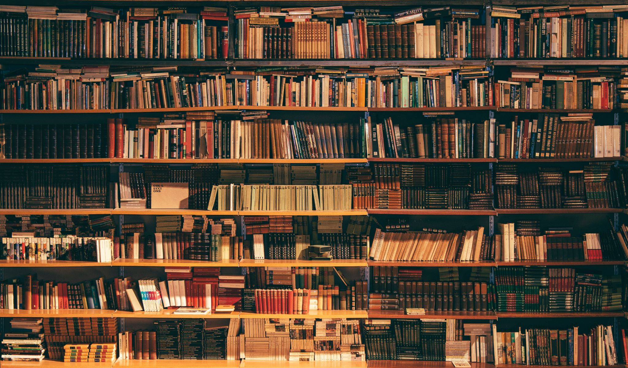 Numerous bookshelves filled with books