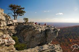 Image result for hanging rock fall foliage