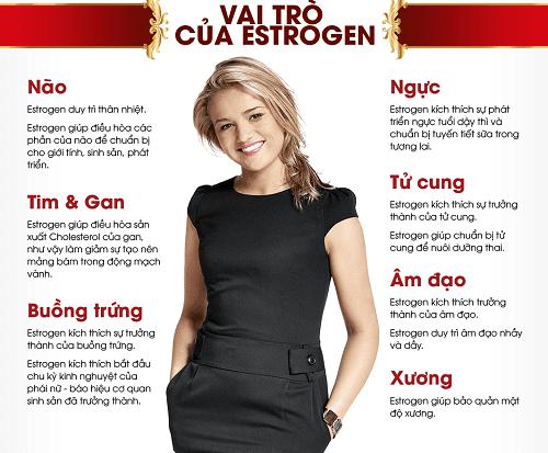 Estrogen đóng vai trò quan trọng với nhiều cơ quan trong cơ thể