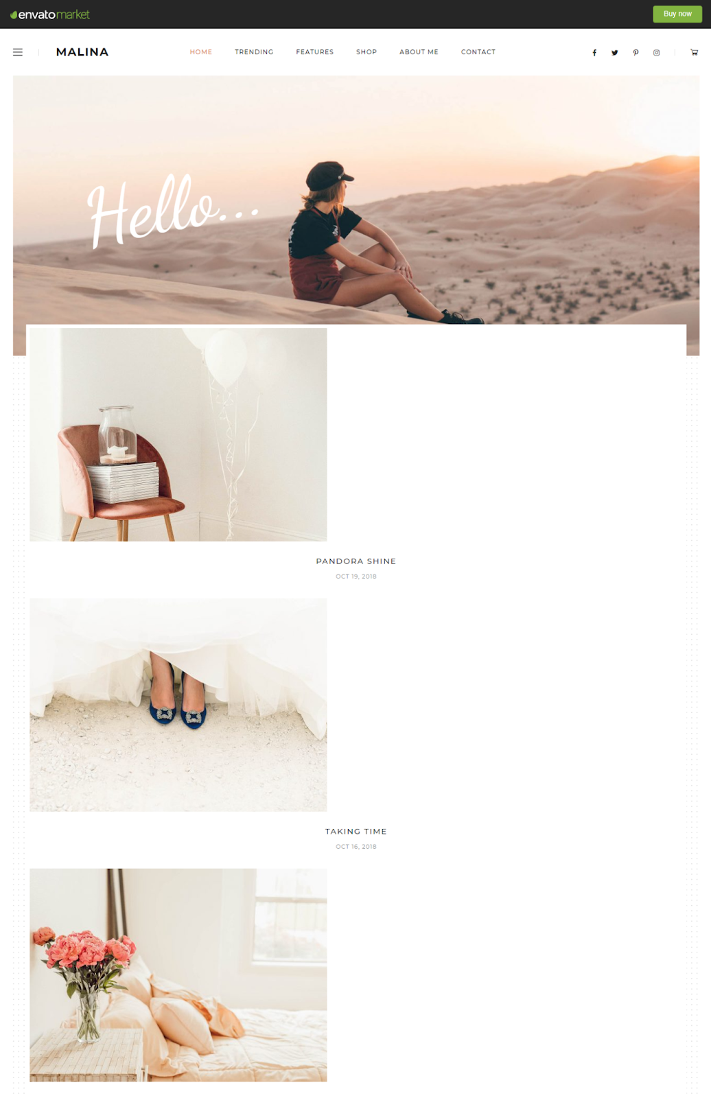 Best WordPress Instagram Themes Malina