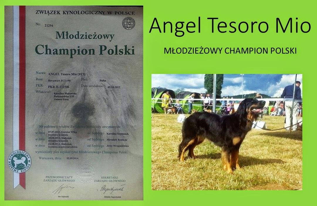 Angel Tesoro Mio