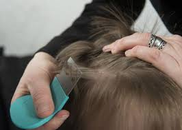 Image result for mum to check for any lice/nits