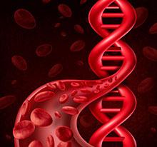 Illustration of DNA, blood cells, and a blood vessel.