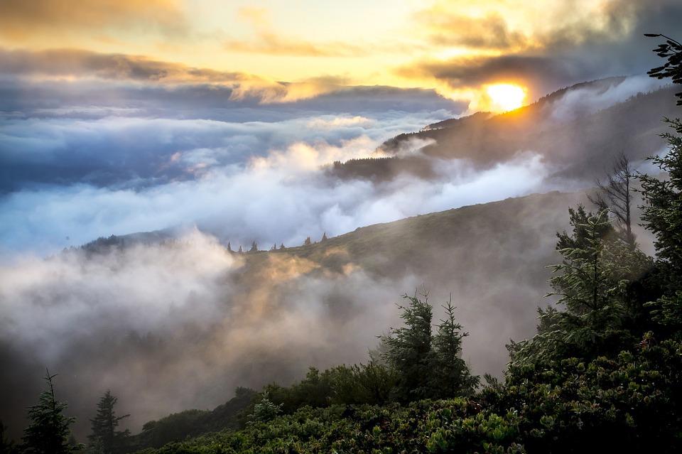 Hills, Landscape, Mist, Smoke, Forest, Trees