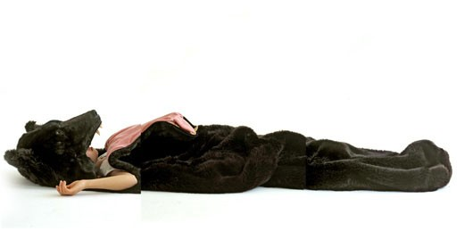 日本, 露營, 黑熊睡袋