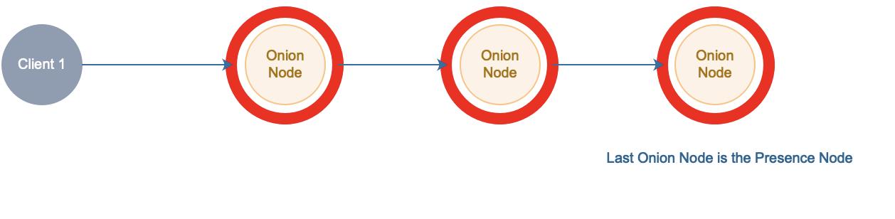 Onion Node