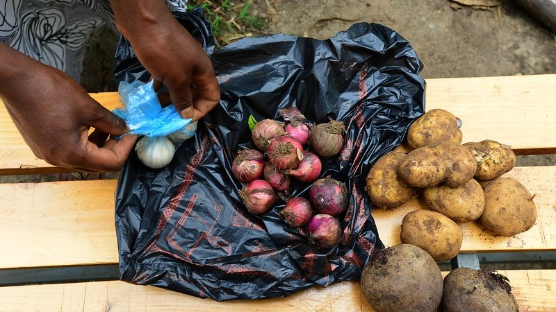 UN food security committee adopts guidelines on food systems and nutrition