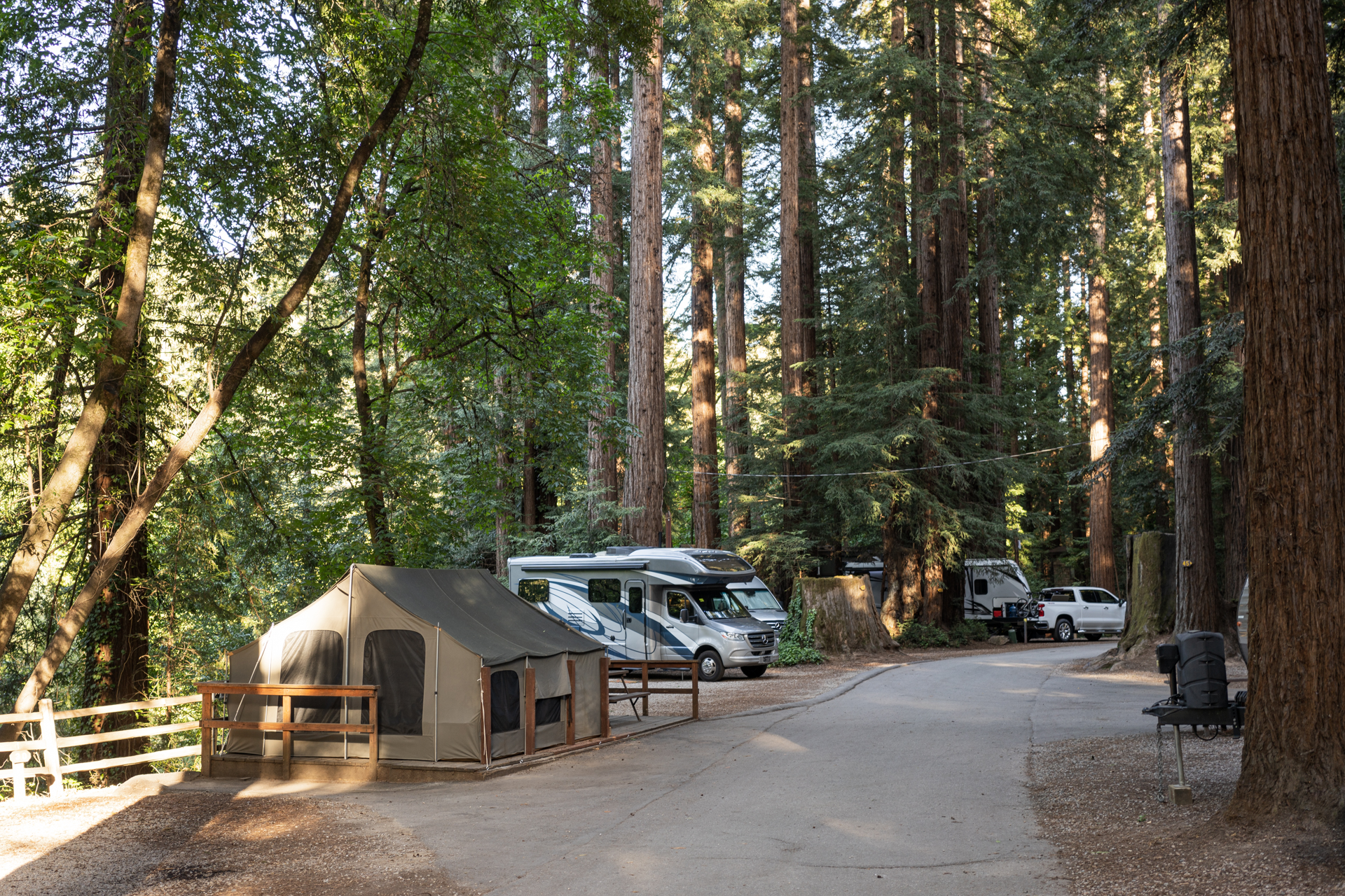 Tent and RVs amount tall redwoods at RV Park.
