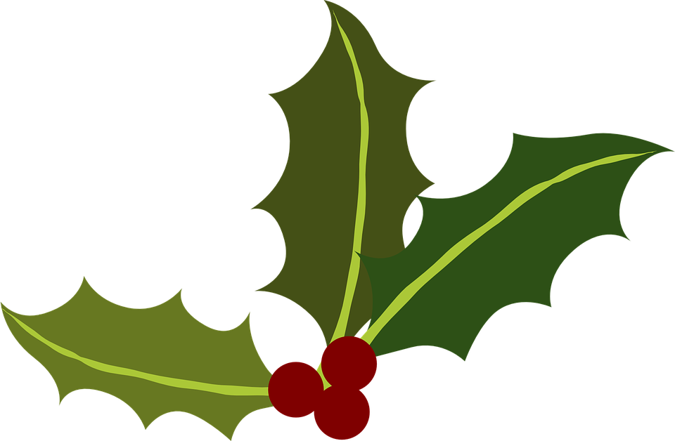 Free vector graphic: Green, Holly, Berries, Christmas - Free Image ...