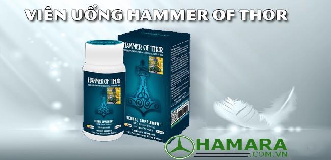 hammer of thor tăng cường sinh lý số một hiện nay diễn đàn du lịch