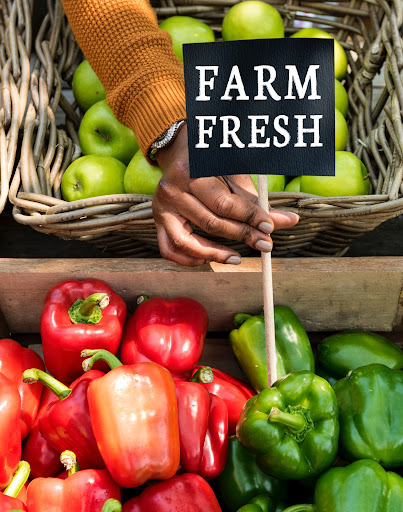 Organic food-growing crops and farms are sustainable