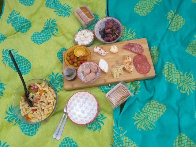at home picnic lockdown