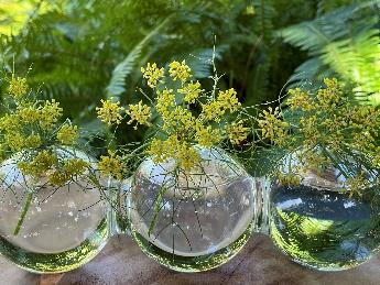 A couple of vases hold yellow flowers  Description automatically generated with low confidence