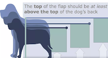 The top of the flap should be at least 1 in avove the top of the dog's back