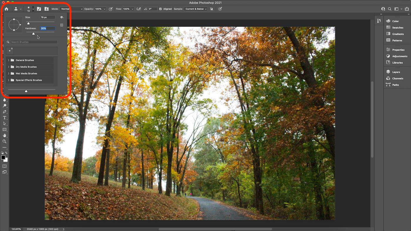 Screenshot of Clone Stamp brush settings in Photoshop.