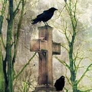Сон могила