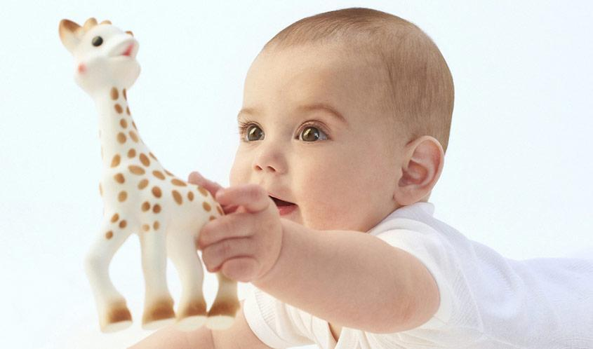 Everthing about sophie giraffe
