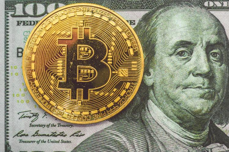 crypto interest