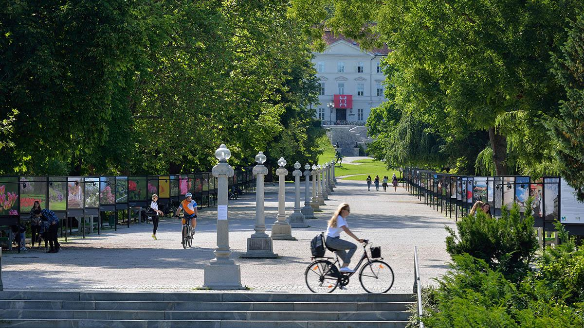 Description: Image result for ljubljana cycling