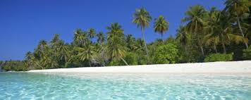 Image result for tonga beach