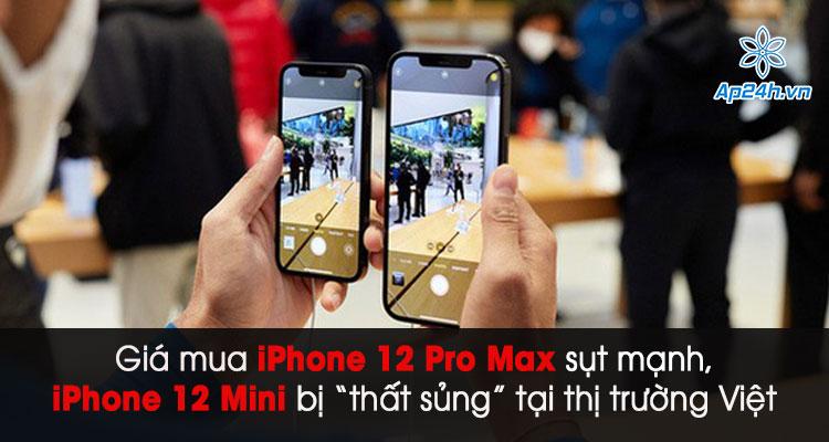 Có nên mua iPhone 12 Pro Max và Mini xách tay?