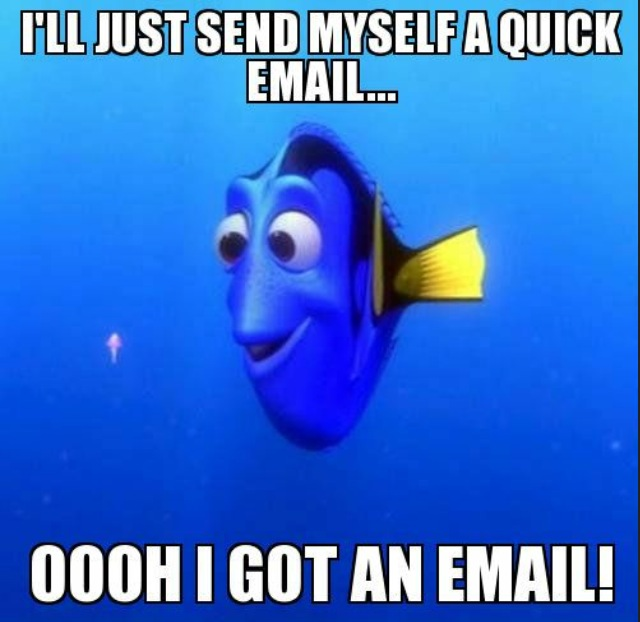 Dory 2.png