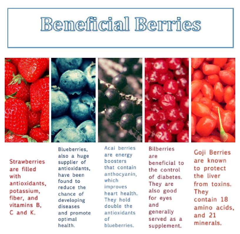 berries final (1).jpg