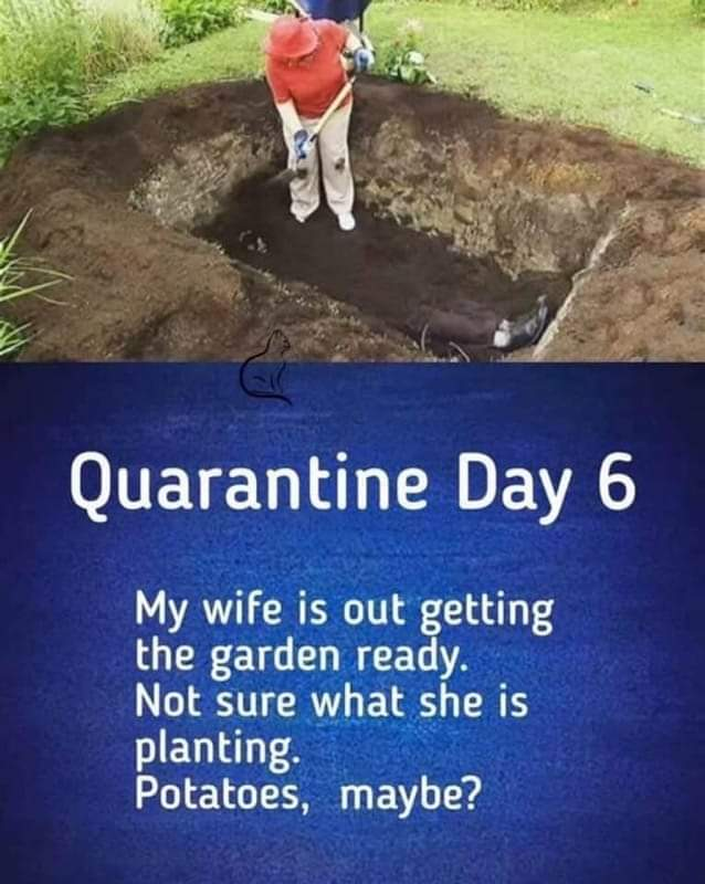 coronavirus meme gardening