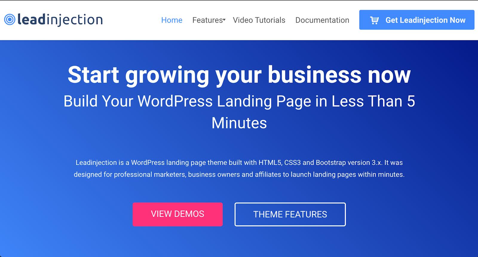 lead injection Landing Page WordPress Theme