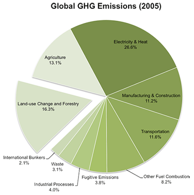 global carbon emissions by category
