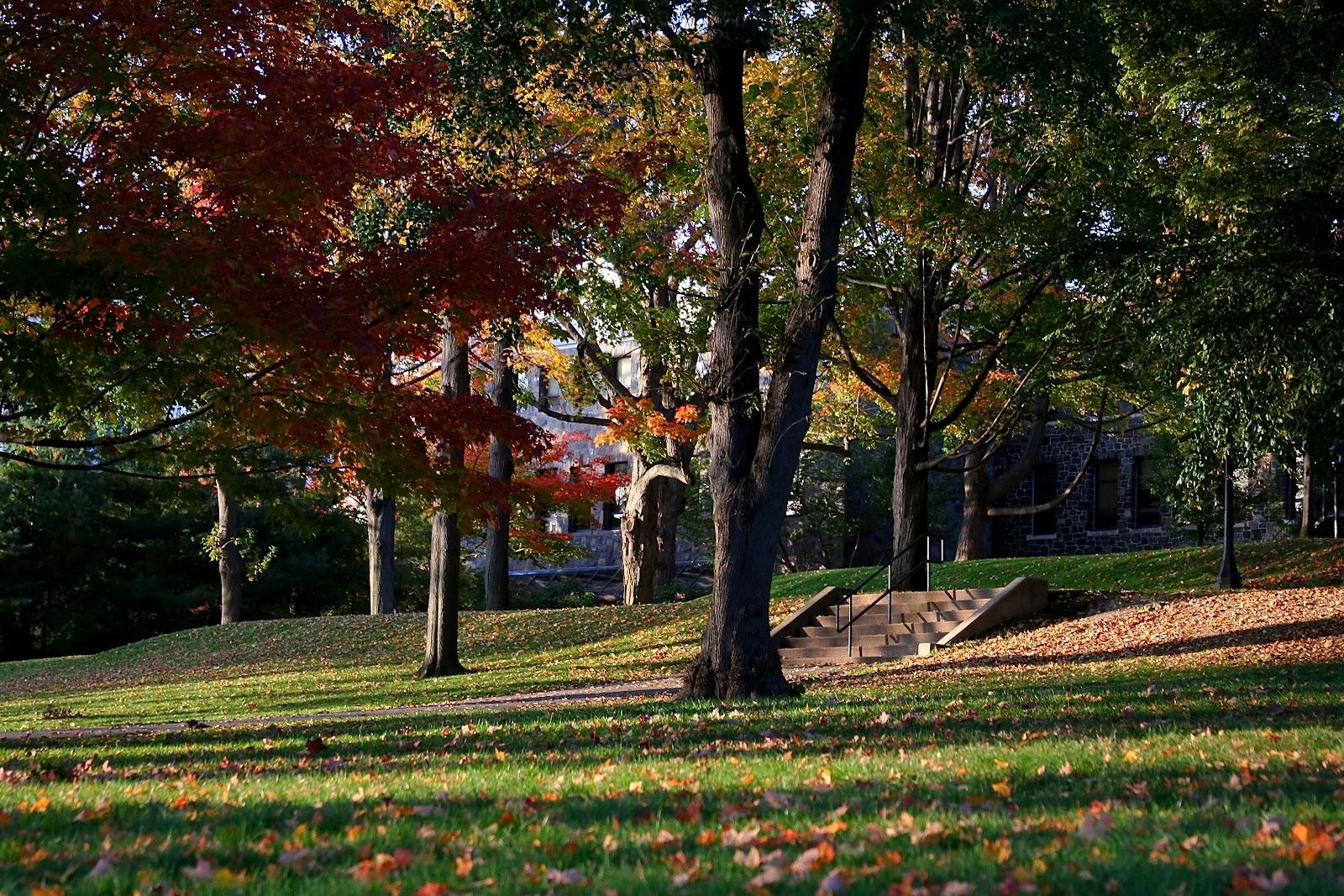 https://upload.wikimedia.org/wikipedia/commons/7/7e/Tufts_University_-_Garden%2C_presidents_lawn.jpg