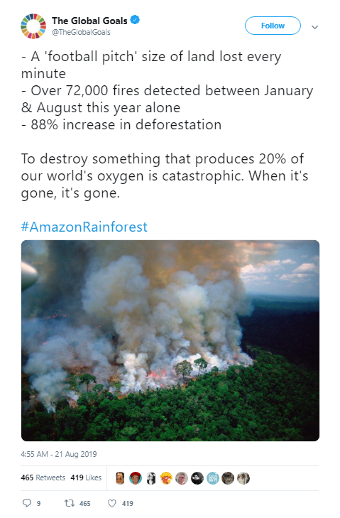 The Amazon Rainforest is Burning and it is So Not Lit | Her