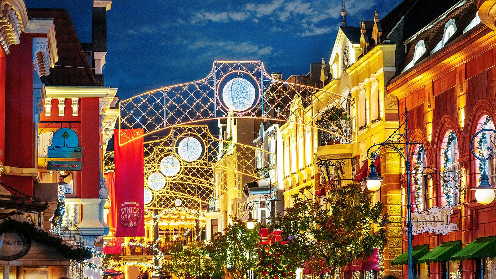 НаРождество вГерманию: Кельн— Бонн— Дюссельдорф— Брюль - 12