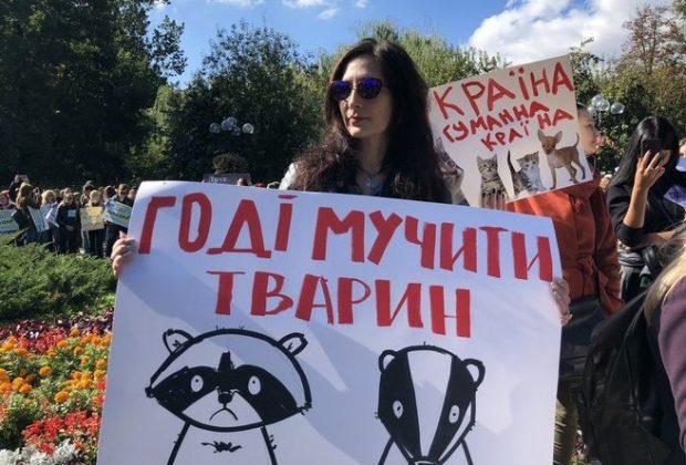 На данный момент в Украине активно занимаются правами животных
