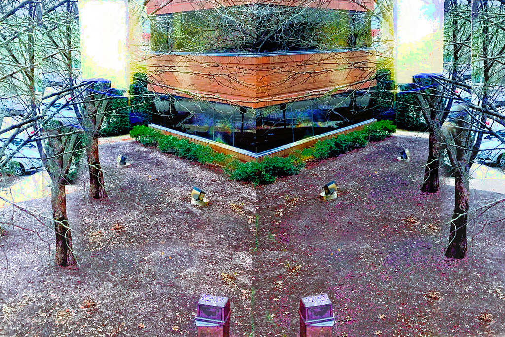 mirrored image of building