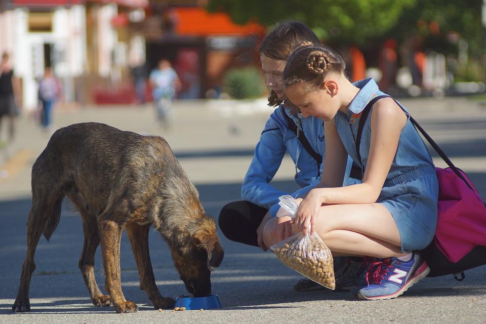 Duas crianças alimentando um cachorro na rua.