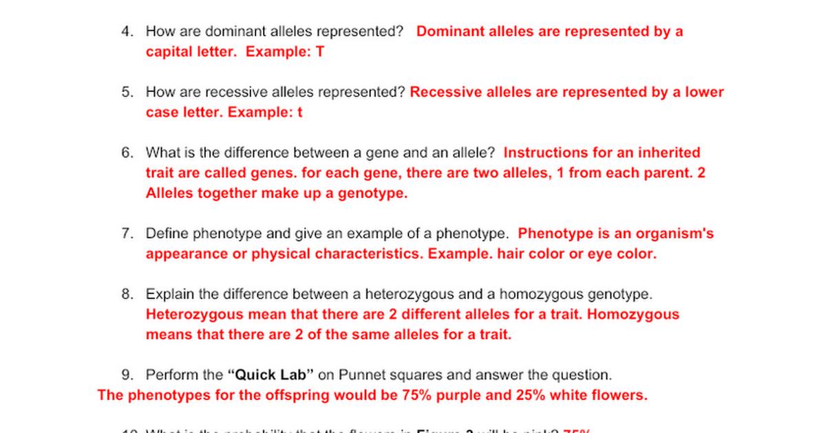 Intro to heredity and Genetics - key - Google Docs