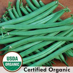 http://www.seedsavers.org/provider-bean?ck=2HxwjGolApNT9q9A&cktime=140650