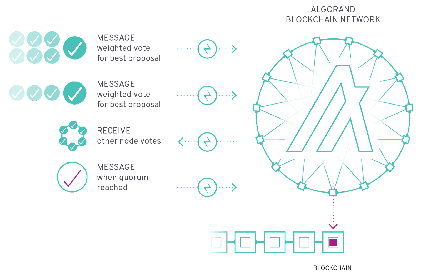 Algorand Blockchain Network