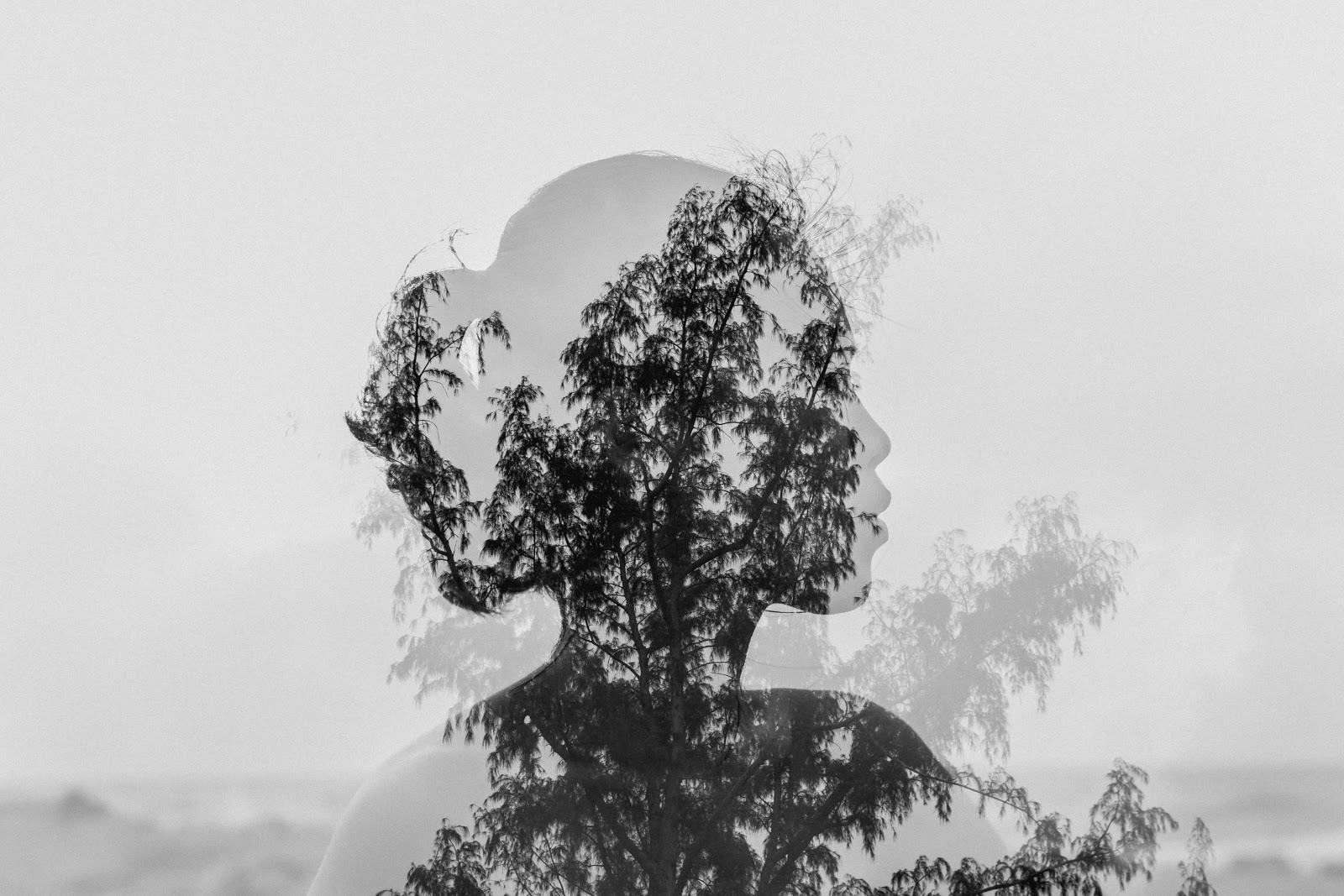 an integrated image of a girl with a tree
