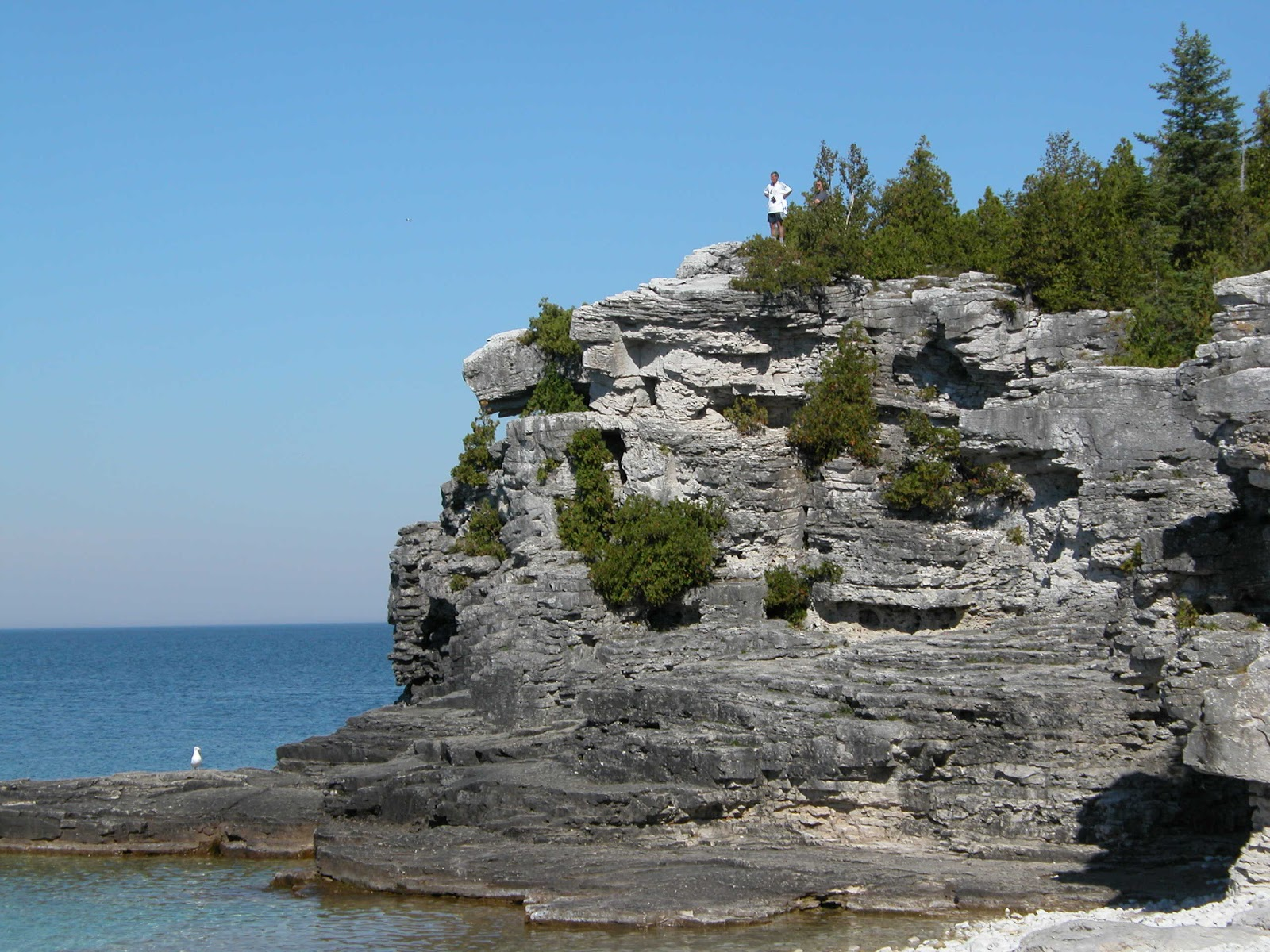 Escarpment_at_Bruce_Peninsula.jpg
