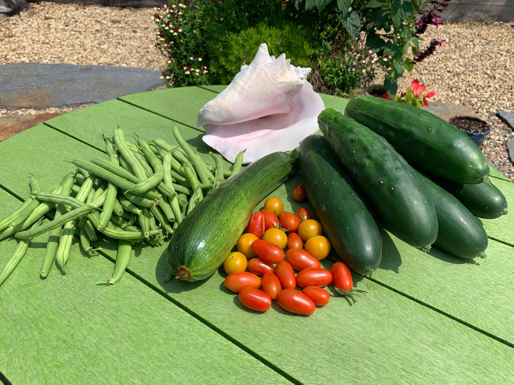 The 6 environmental and health benefits of growing your own food