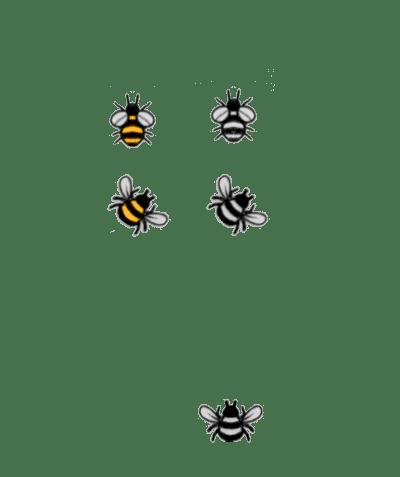 Honey Buz Honey and CBD