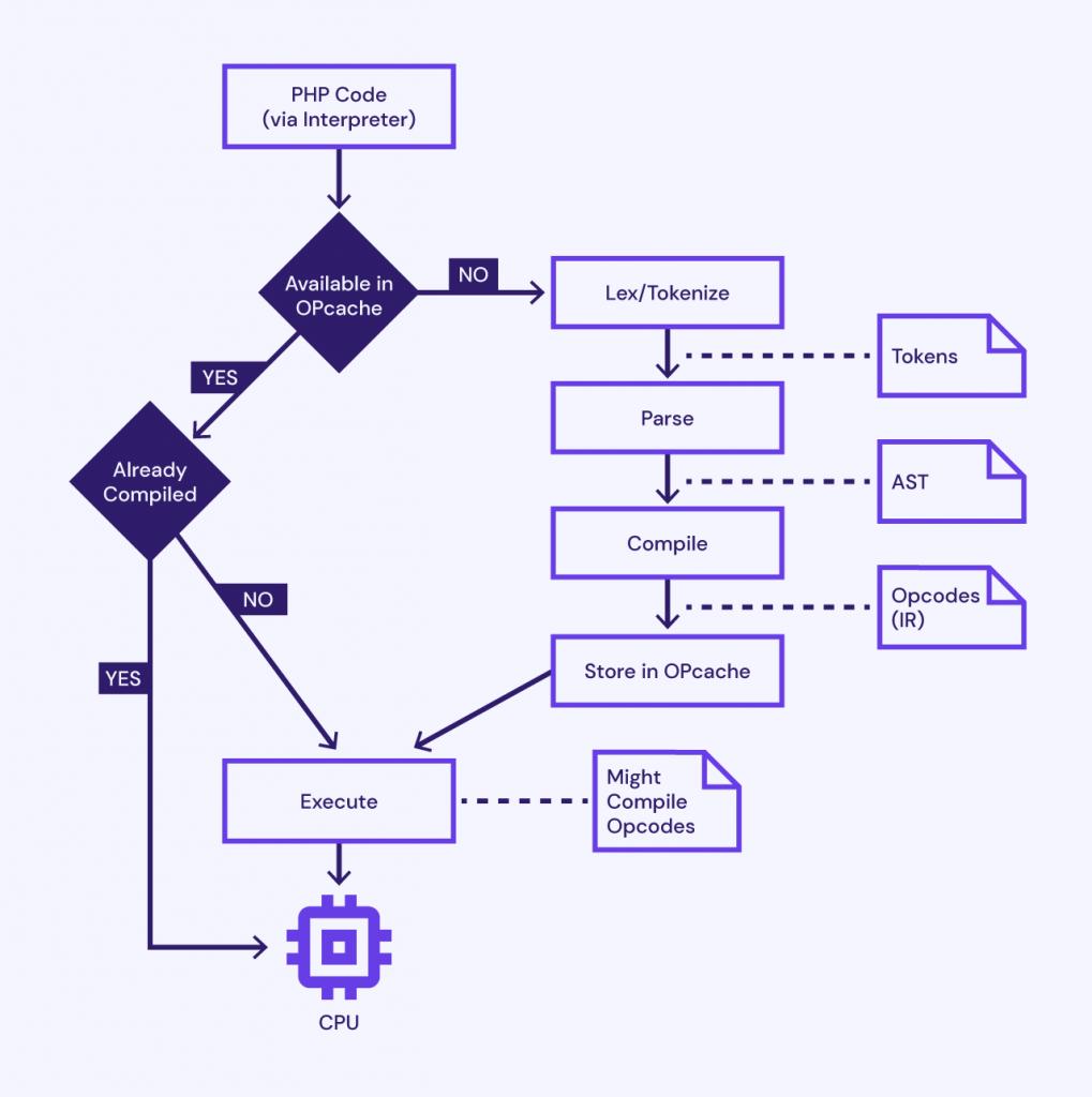 Etapas de ejecución del script PHP 8